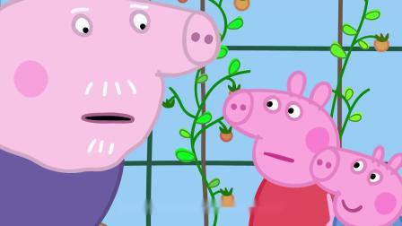 小猪佩奇:猪爷爷只砸别人的玻璃房,真缺德!