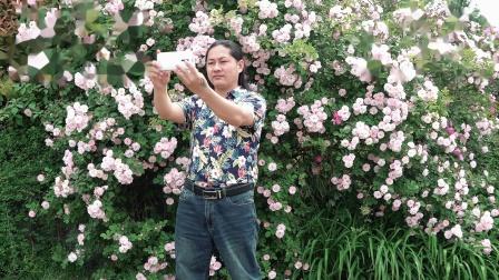 城阳世纪公园《太想念》朱坤 在梦里吻的脸,却来不到我身边/索尼FDR-AX700拍摄