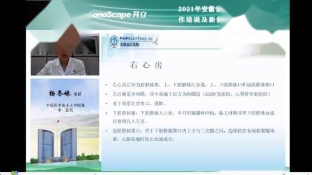 2021-04-11心血管解剖-安徽-杨冬妹.wmv