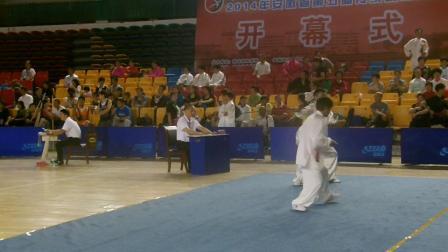 安徽省传统武术比赛42式太极剑潘功奉第四名