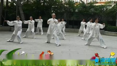 新编传统中架杨式28式太极拳