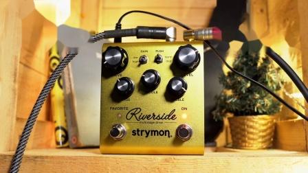28 - Strymon Riverside - 100 Days 100 Gears