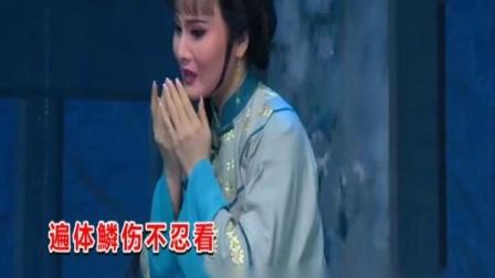 黄宝琪、林洁燕-纵死也要把冤鸣(左)《杨乃武与小白菜》潮剧精选唱段大全