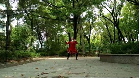 孝感晨练广场舞(快节奏)《那拉提的养蜂女》
