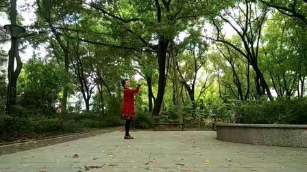孝感晨练广场舞(三种跳法)《那拉提的养蜂女》