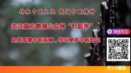 中医刺络放血疗法王合民老师讲解挑治羊毛疔视频