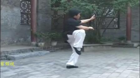 太极名家 韩清民老师演练转身摆莲