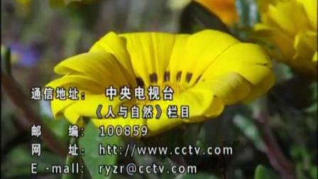 CCTV1综合频道2011、2013包装[人与自然片尾]