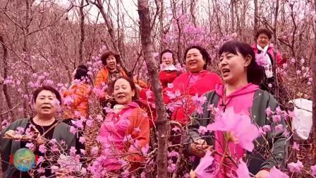 东汤泡温泉赏花映山红