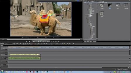 视频编辑颜单色与色度键的应用