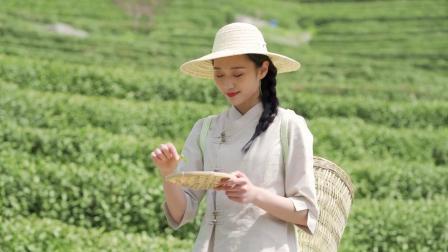 中国茶 吉他演奏大卫