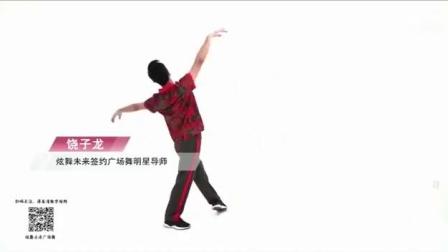 饶子龙原创舞蹈《我和我的祖国》背面演示_标清