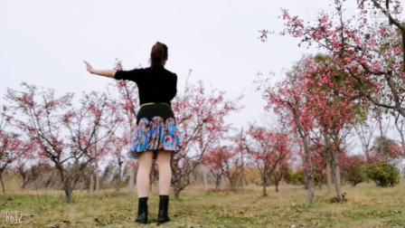 【任如意如意舞】背面演示《你像三月桃花开》_超清