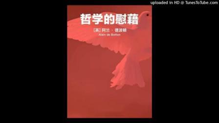 读书:《哲学的慰藉》。#唐加文#