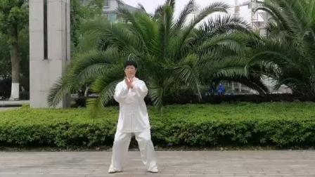 舒平演练陈式太极拳