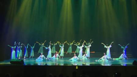 舞蹈 中国舞当代舞《雨后梧桐》