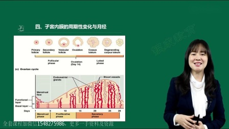 2021贺银成江薇妇产科最新视频课程