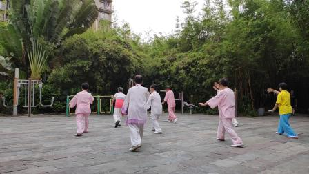 学习太极拳竞赛套路28式20210504