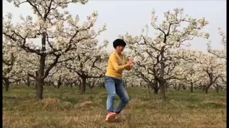 春满梨园_高清_