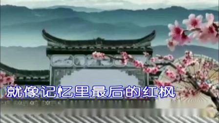 红唇-安静 KTV歌词版