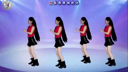欢快DJ广场舞《夜之光》花姐流行版,音乐动感,舞步简单附教学~