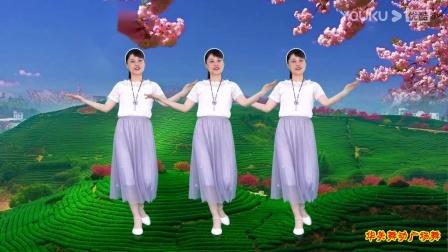广场舞《相思桃花雨》歌曲舒心好听,舞步优雅~