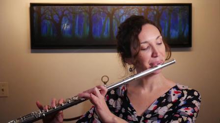 日本珍珠PF665长笛讲解演奏
