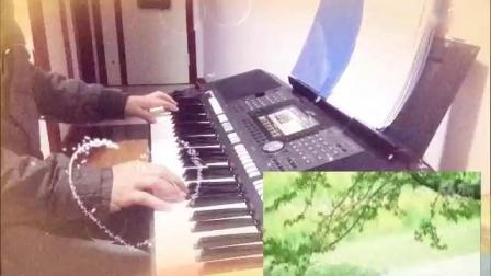 《爱情一阵风》F调  (雅马哈电子琴s970演奏)_标清