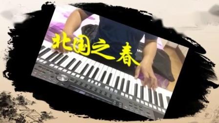 《北国之春》电子琴演奏_标清