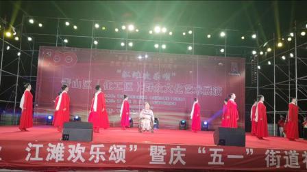 青山区纪念建党100周年江滩文艺汇演(五)