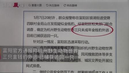黑豹野保站 潇湘晨报  金钱豹逃逸.mov