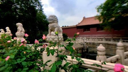 领略北京景山公园的风情,去北京旅游必看!