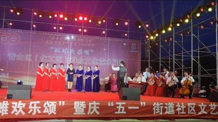 青山区纪念建党100周年江滩文艺汇演《三》