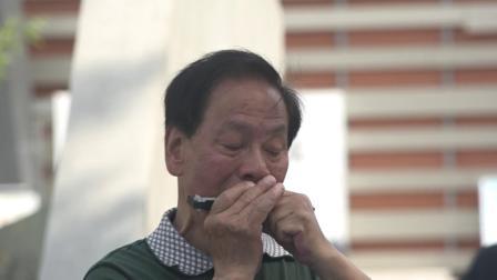 4.社区文化活动《琴韵悠扬乐器合奏》弹起我心爱的土琵琶