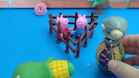 僵尸带走了佩奇和乔治,玉米大炮来救佩奇,茄子大炮来救乔治