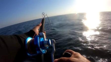 独自搏鱼近2小时, 轻型装备铁板钓力擒150KG的巨型金枪!满船的兴奋......