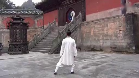 武当太极拳——三丰太极拳十八式(反正)李在峰