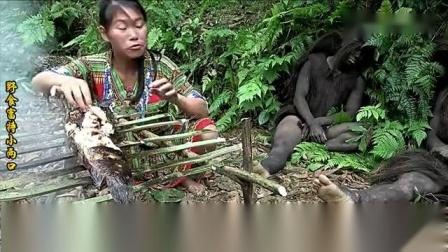 丛林兄弟沦落荒野,正美滋滋烤鱼吃,怎料遇见绝色美女来偷鱼