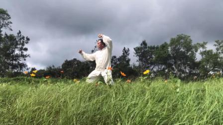 山高草青太极情,学练武当太极十三式。