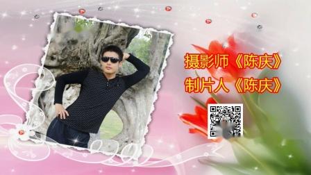 歌伴舞 我的祖国  陈庆 摄