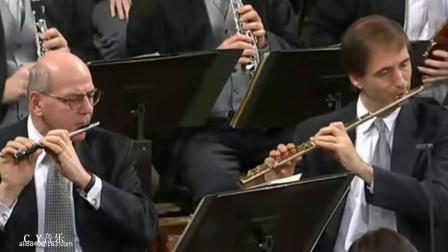 Vorwärts; Polka schnell; op. 127前进快速波尔卡 -  02年新年音乐会  指挥小泽征尔(C Y试音)