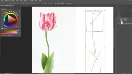 【每日一个插画技巧】如何分析、练习线稿 (临摹必看)