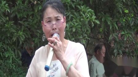 豫剧唱段(长空雁叫声啾啾)陈杏老师演唱