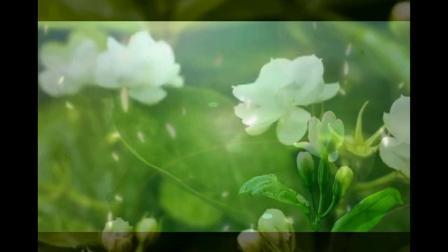 半音阶口琴演奏中国民谣《好一朵茉莉花》