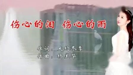 伤心的泪伤心的雨_杨美华,伴奏,大字幕。