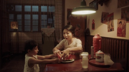 鸿雁智能家居品牌宣传片