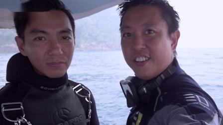 海底绚丽的珊瑚丛,是鱼的天堂,珊瑚随波摆动 分体式潜水手电筒