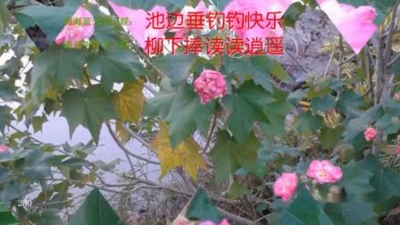 【与友玩联15E】池边垂钓钓快乐树下放歌歌升平