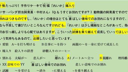 日本饲养员亲手做蛋糕祝福小熊猫出嫁. 日本新闻