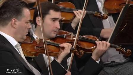 Winterlust. Polka (schnell), op. 121冬趣波尔卡 - 17年年维也纳新年音乐会 指挥 杜达梅尔(C Y试音)